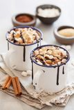 S`mores hot chocolate mini marshmallows cinnamon winter drink Stock Image