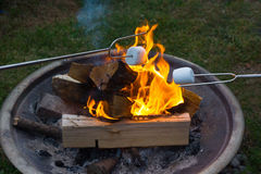Smores roasting over open fire. Roasting marshmallows over open fire to make smores is a summertime favorite Royalty Free Stock Photo