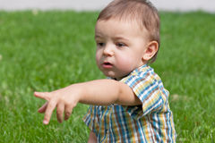 That's my desire!. A portrait of a toddler pointing desired toy against the green grass Royalty Free Stock Image