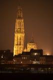 's nachts Antwerpen Stock Fotografie