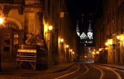 's nachts de straat van Lviv stock afbeeldingen