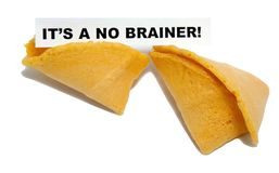 IT`S A NO BRAINER!. Concept fortune cookie. Isolated Royalty Free Stock Photos
