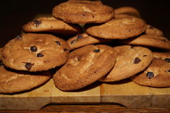 słodcy czekoladowi ciastka Obrazy Stock