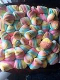 Słodcy Fluffs Fotografia Stock