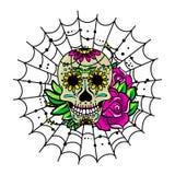 Słodka czaszka Zdjęcie Royalty Free