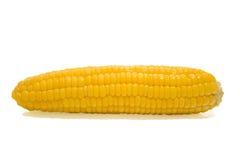 Słodka kukurudza  Zdjęcie Stock