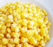 słodka kukurydza Fotografia Royalty Free