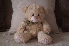 słodki teddy bear Obrazy Royalty Free