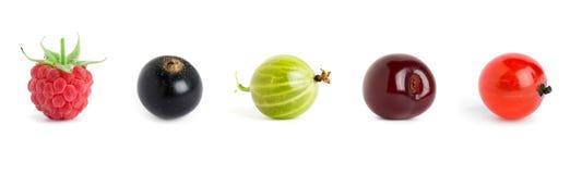 Słodkie jagody Obrazy Royalty Free