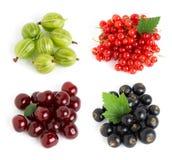 Słodkie jagody Obraz Royalty Free