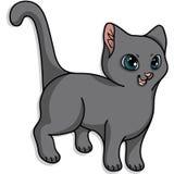 słodkie kota zdjęcia royalty free