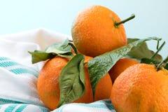 Słodkie mandarynki Fotografia Stock