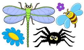 słodkie zbierania owad Obrazy Stock