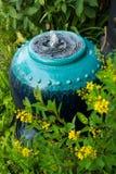 Słoju ogród obraz stock