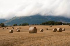Słoma bele w polach pól uprawnych Zdjęcia Stock