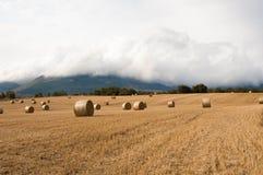 Słoma bele w polach pól uprawnych Obraz Royalty Free