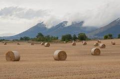 Słoma bele w polach pól uprawnych Fotografia Stock