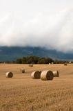 Słoma bele w polach pól uprawnych Zdjęcia Royalty Free