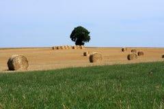 Słoma bele W Wiejskim francuza krajobrazie Fotografia Stock