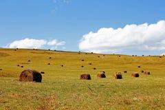 Słomiana rolki bela na polu ziemia uprawna Zdjęcie Royalty Free