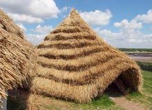 Słomiani Neolityczni domy Zdjęcia Stock