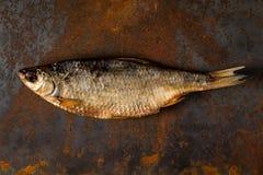 Słona sucha rzeki ryba Zdjęcia Royalty Free