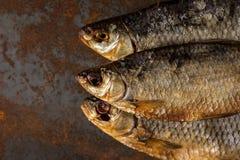 Słona sucha rzeki ryba Obraz Royalty Free