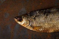 Słona sucha rzeki ryba Fotografia Stock