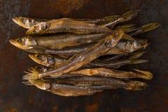 Słona sucha rzeki ryba Obrazy Stock