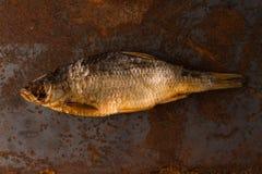 Słona sucha rzeki ryba Obrazy Royalty Free