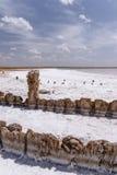 Słone jezioro Obraz Stock