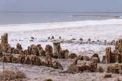 Słone jezioro Obrazy Royalty Free