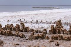 Słone jezioro Fotografia Royalty Free