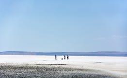 Słone jezioro, Turcja Zdjęcia Royalty Free