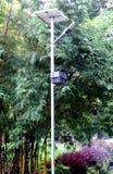 Słoneczna lampa w ogródzie Obrazy Stock