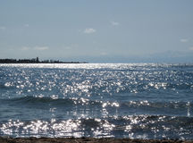 Słoneczni asteryski na jeziorze Zdjęcia Royalty Free