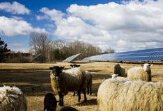 słoneczni panel cakle Obrazy Stock