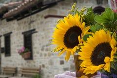Słoneczników bukiety na tle stary dom Obrazy Royalty Free