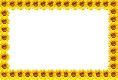 Słonecznik rama Obrazy Royalty Free