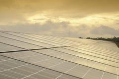 słoneczny komórka ranek Zdjęcia Royalty Free