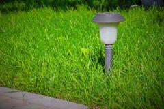 Słoneczny lampion jest na zielonym gazonie Obrazy Stock