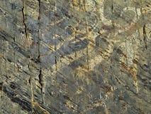 Słoneczny symbolu rogacz na kamiennej twarzy Petrogliphs Fotografia Stock