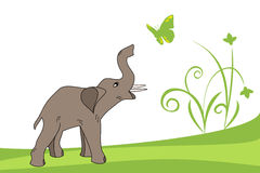 słoni potomstwa Zdjęcia Stock
