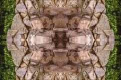 Słonia abstrakt Zdjęcie Royalty Free