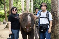 słonia gandah Kuala sierocina sanktuarium Zdjęcia Royalty Free