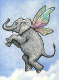 Słonia latanie obrazy royalty free