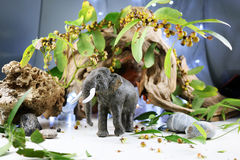 Słonia model Zdjęcie Royalty Free