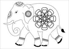 Słonia projekt ilustracji