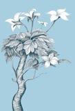 Słowa drzewo ilustracja wektor