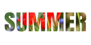 Słowa lato Obraz Royalty Free